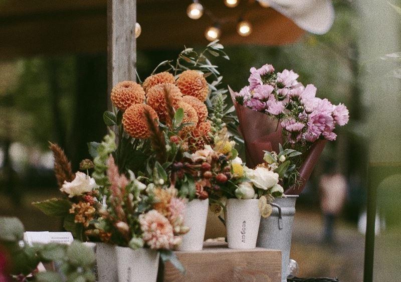 Ешь, цвети, беги: три мини-фестиваля Veter Summer Festival (15-16 августа 2020)