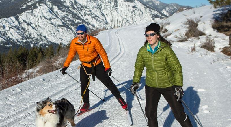 Зима в Куршевеле: каким спортом можно заняться на курорте Grandes Alpes