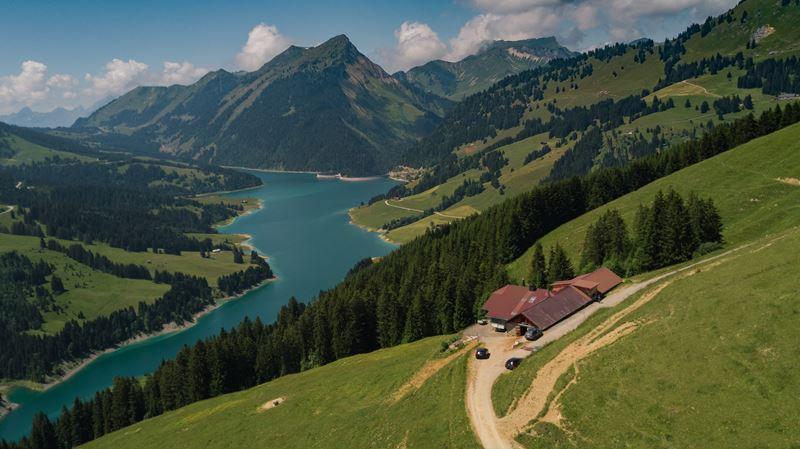 Швейцарский сыр Тет де Муан – Альпы
