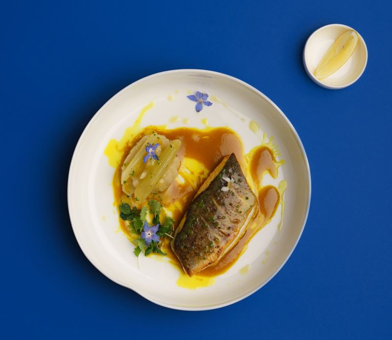 Рецепты блюд с морепродуктами - Сибас с кремом из сельдерея и куркумой