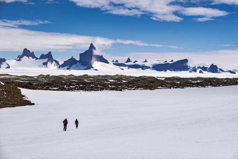 На Южный Полюс из Кейптауна: путешествие в Антарктиду - природа