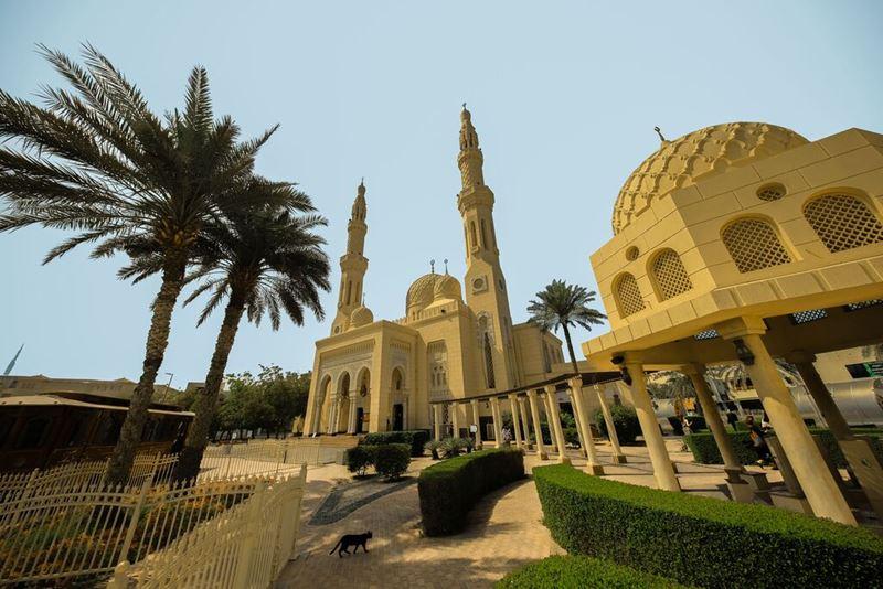 Семейный отдых в Дубае с детьми - Тур в мечеть Джумейра