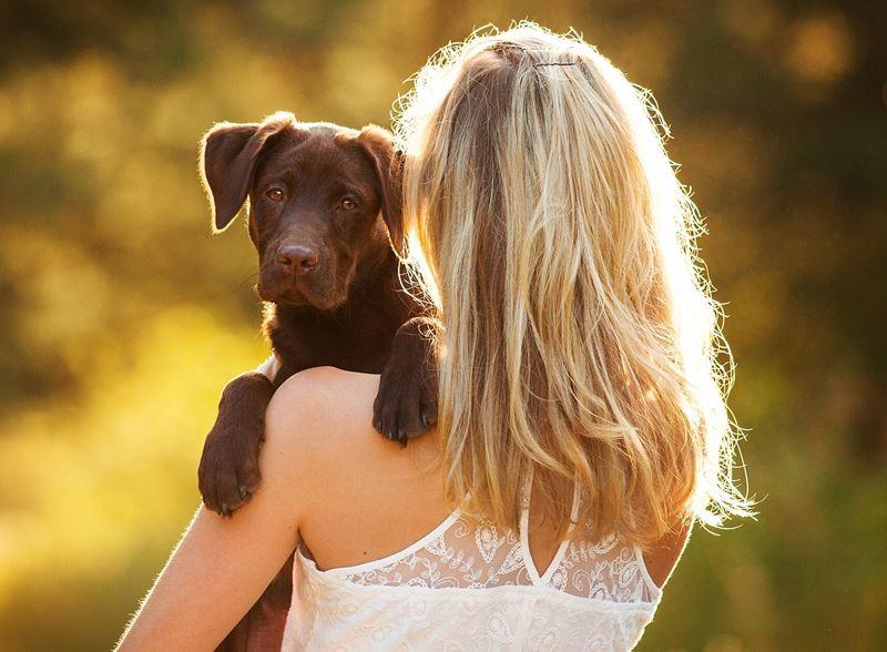«Я жалею, что завела собаку. Щенок делает мою жизнь невыносимой»