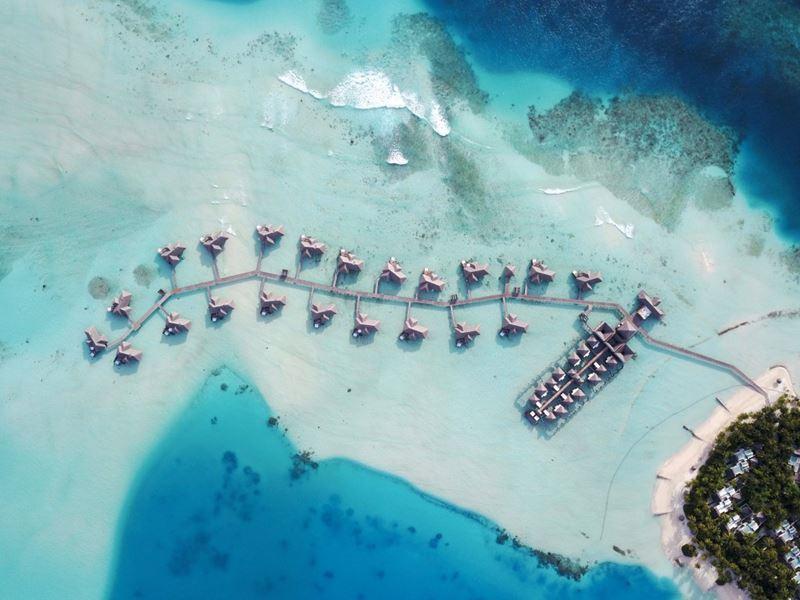 Conrad Maldives Rangali Island предлагает гостям «усыновить» кораллы