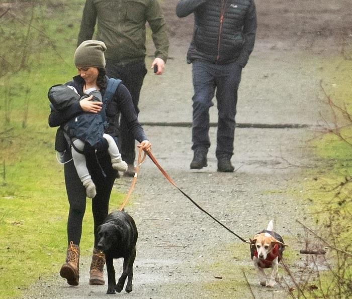Меган на прогулке с Арчи и двумя собаками в Ванкувере в январе 2020 года