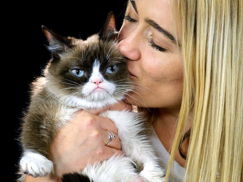 10 фактов о «сердитой кошке», которая принесла хозяйке миллионы, но прожила короткую жизнь