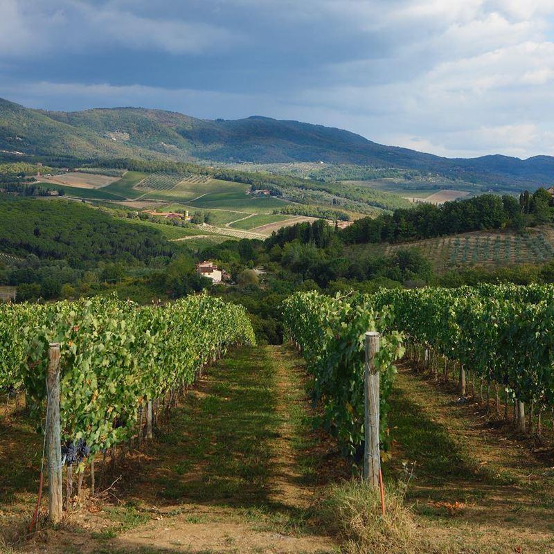 Красивые города Тосканы: Винодельческий район Chianti Classico