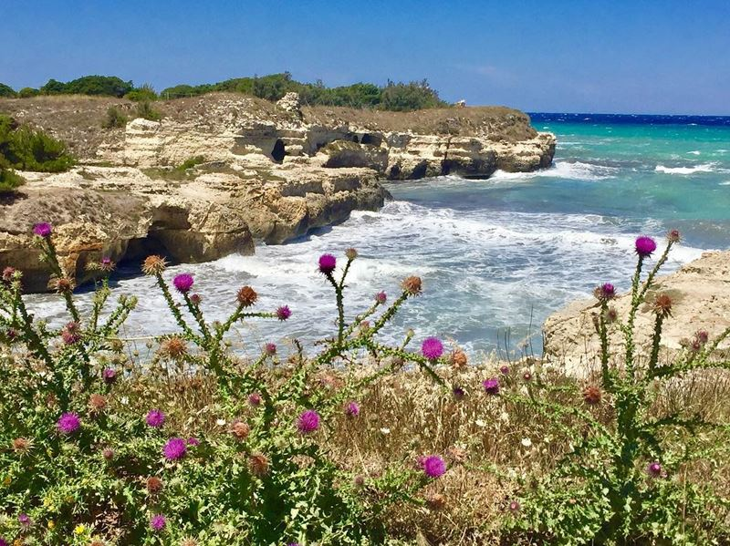 Лучший пляжный отдых в Италии: Апулия