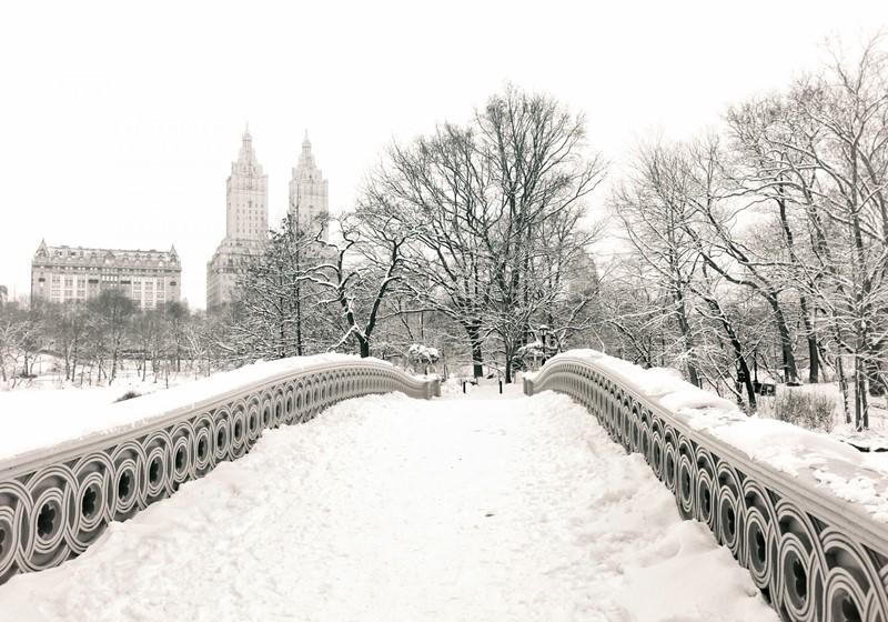 Нью-Йорк зимой снег в большом городе  (12)