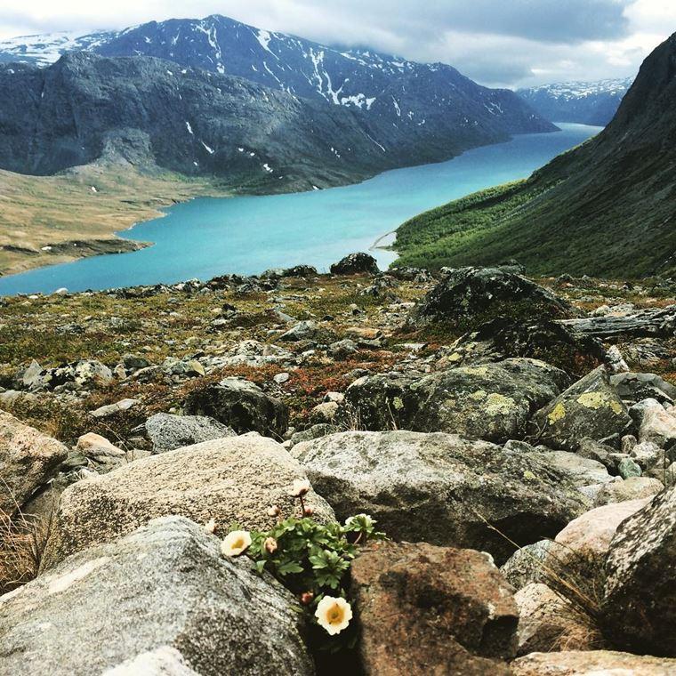 Места Норвегии, которые нужно посетить: Национальный парк Йотунхеймен