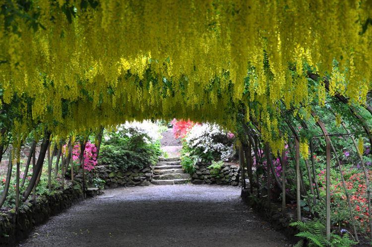 Самые красивые сады и парки мира: сад Боднант в Уэльсе
