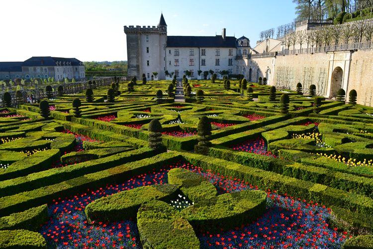 Самые красивые сады и парки мира: сады замка Вилландри во Франции