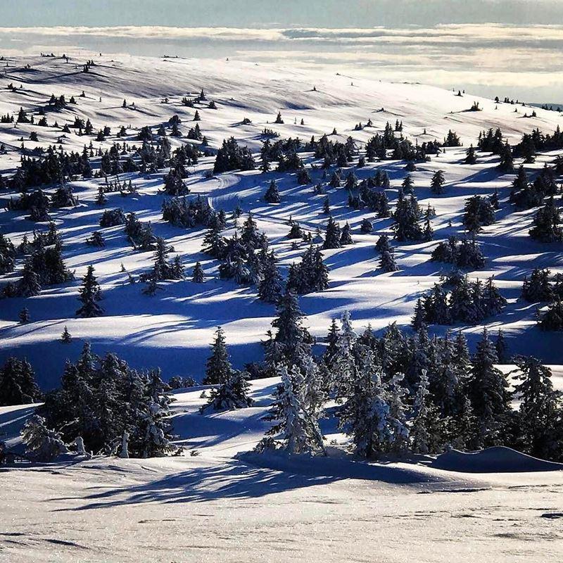 Красивые города Норвегии: Лиллехаммер