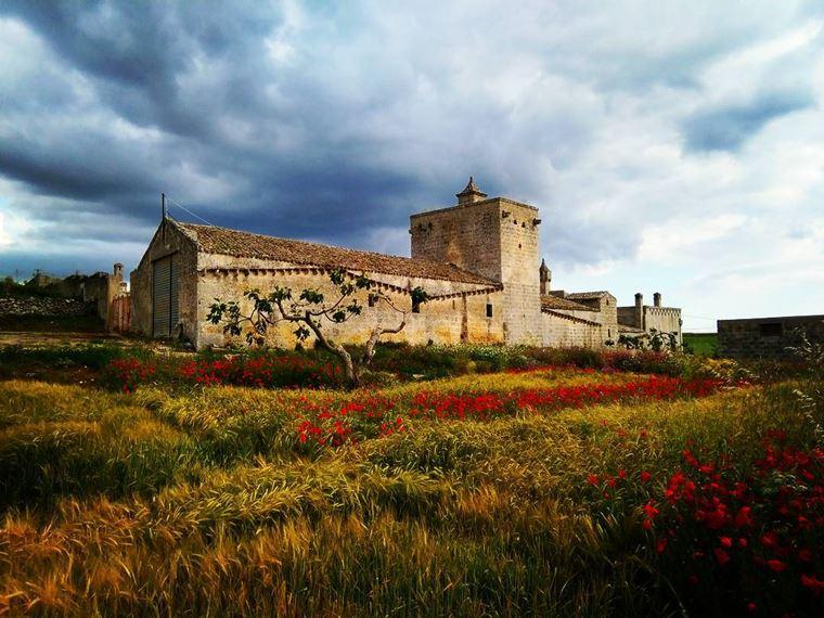 Города южной Италии: Альтамура