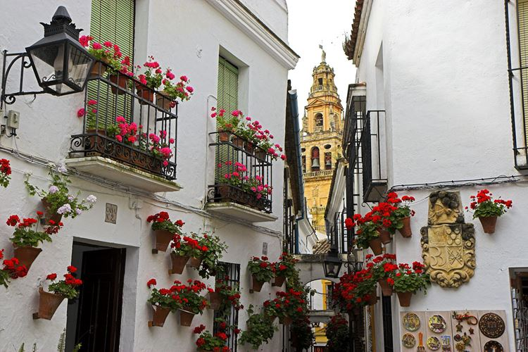 Самые известные и красивые улицы мира - Каллеха-де-лас-Флорес в Кордове (Испания)