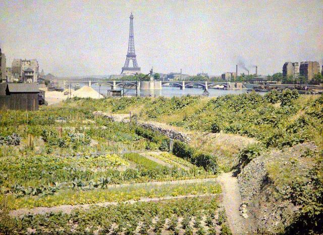 Старый Париж: редкие цветные фото - зелёное поле с Эйфелевой башней вдали