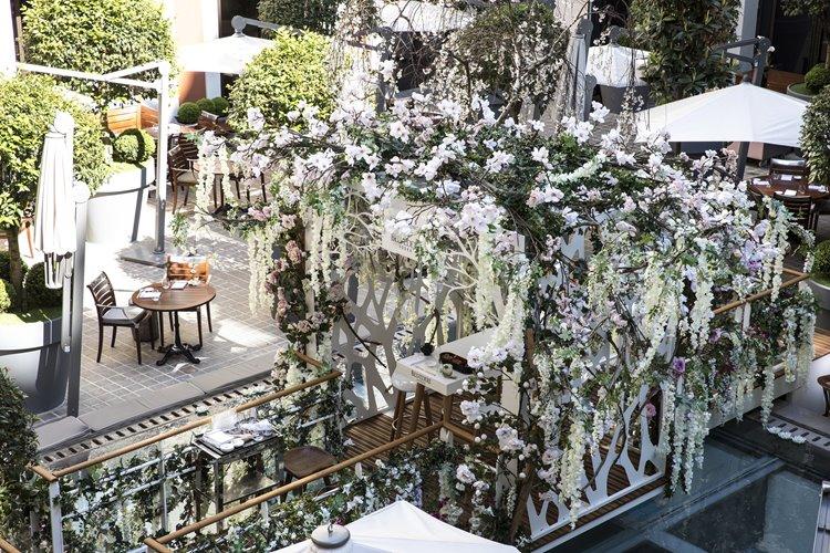 Цветущий сад Belvedere в отеле Le Royal Monceau – Raffles Paris