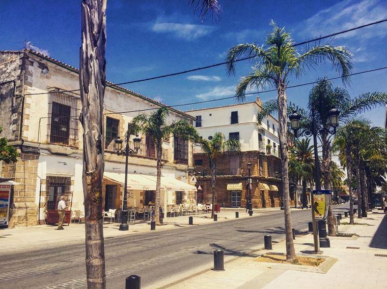 Города Испании на побережье Атлантического океана: Эль Пуэрто де Санта Мария - улица в пальмах
