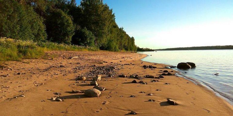Сказки заповедного леса: экологические маршруты России