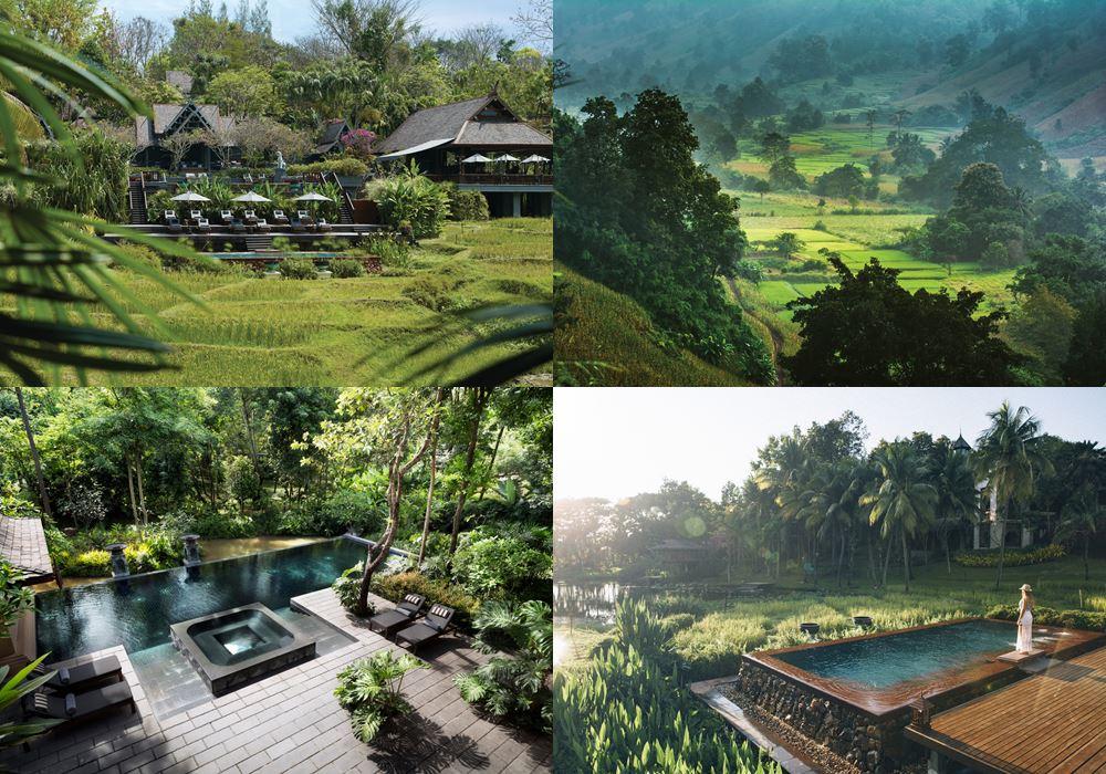 Курорт Four Seasons Resort Chiang Mai - тропическая зелень и пейзажный бассейны