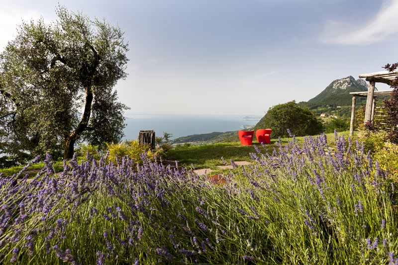 Курорт Lefay Resort & SPA Lago di Garda: природа