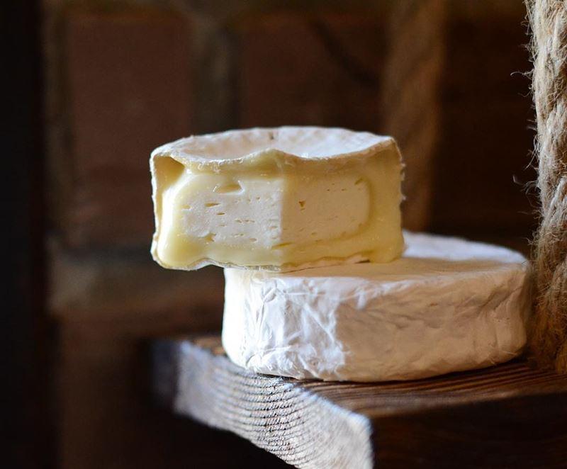 Сорта французского сыра - Камамбер, мягкий с плесневой корочкой