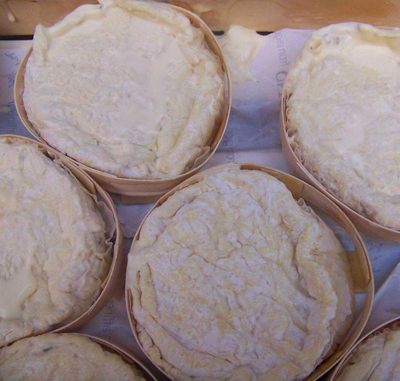 Сорта французского сыра - Сен-Фелисьен, мягкий круглый