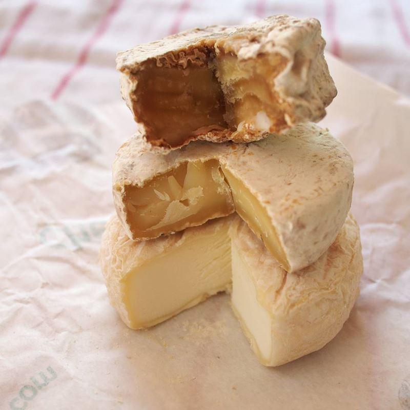 Сорта французского сыра - Пикодон, мягкий козий круглый