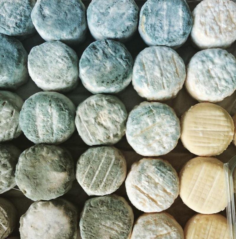 Сорта французского сыра - Кроттен-де-Шавиньоль, мягкий козий с голубой плесенью