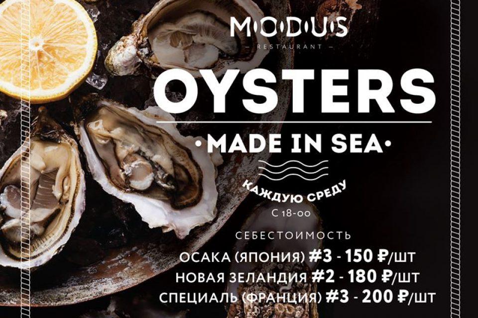 Устрицы по себестоимости в ресторане MODUS