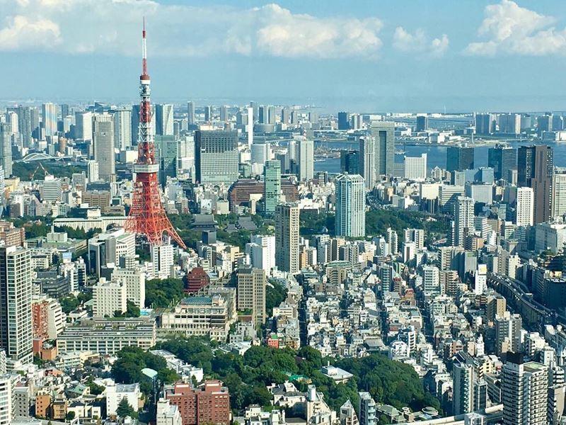 Самые безопасные и опасные города мира 2017 - вид сверху на Токио