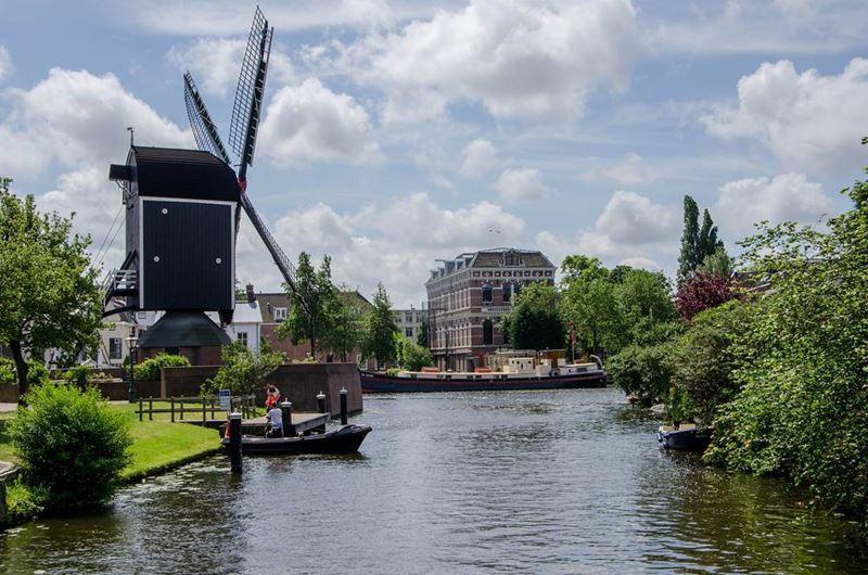 Красивые города Нидерландов: пейзаж Лейдена с мельницей