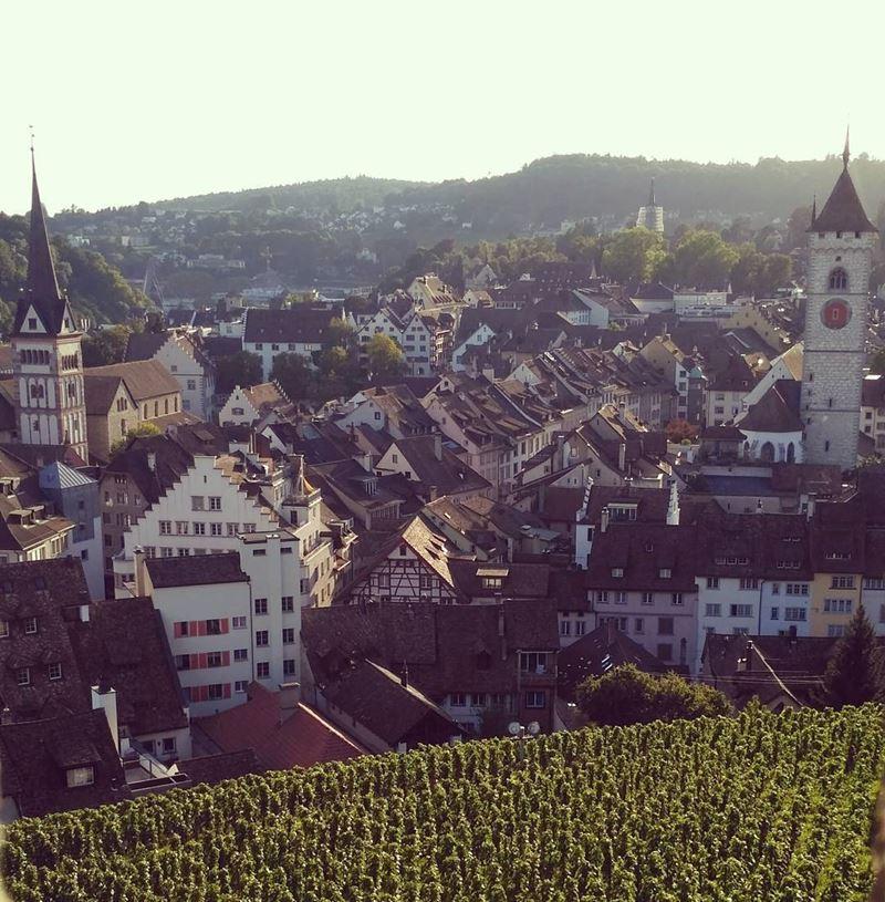 Красивые города Швейцарии: вид сверху на Шаффхаузен