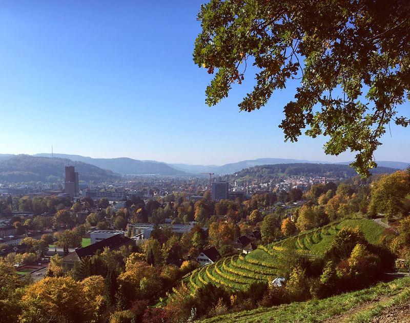Красивые города Швейцарии: вид с горы на Винтертур