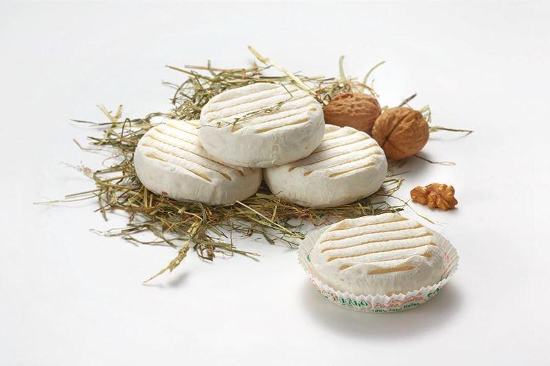 Сорта итальянского сыра: Томино (Tomino)