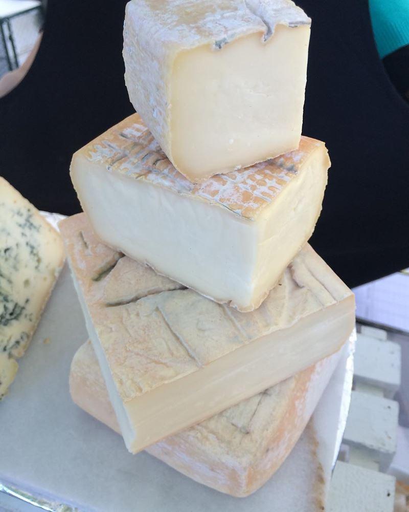Сорта итальянского сыра: Таледжо (Taleggio)