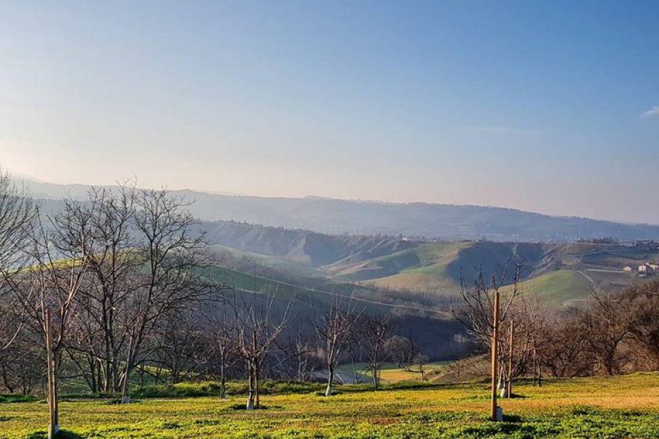 Эмилия-Романья пользуется большим спросом у российских туристов