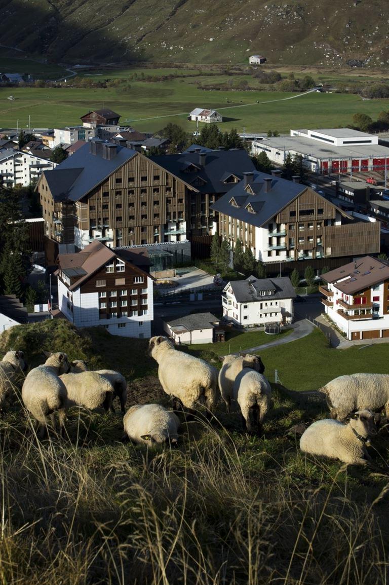 Летние предложения отеля The Chedi Andermatt - Прогулка с гидом-пастухом