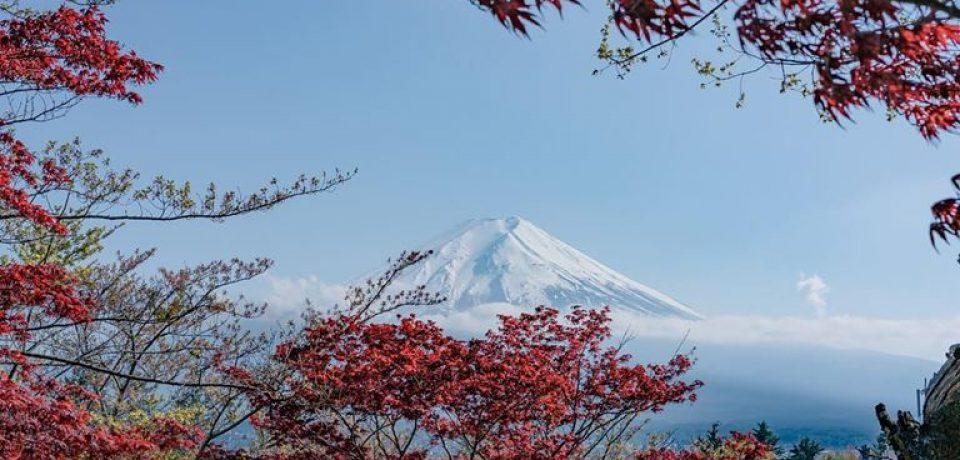 Российские туристы стали чаще ездить в Японию