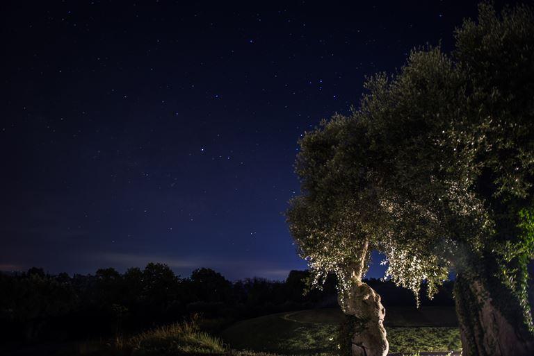 Курорт Costa Navarino, Греция – отдых летом 2018 - звездное небо ночью