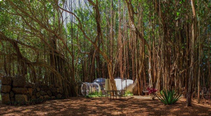 Отельная сеть Sun Resorts отдых в доме-пузыре на Маврикии