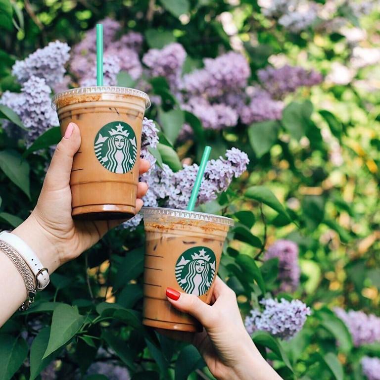 Гид по летним холодным напиткам Starbucks -  Ройбуш Красное Яблоко Чай Латте