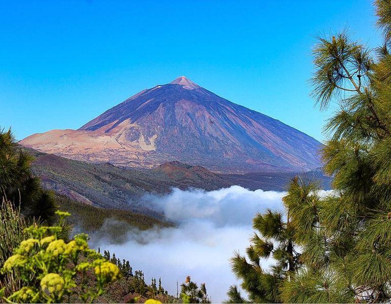 Отдых на острове Тенерифе летом - Природный парк «Корона Форесталь»