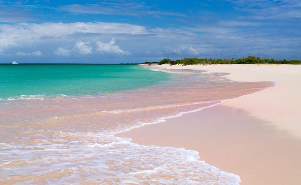 Цветные пляжи мира - Розовый пляж (Антигуа и Барбуда)