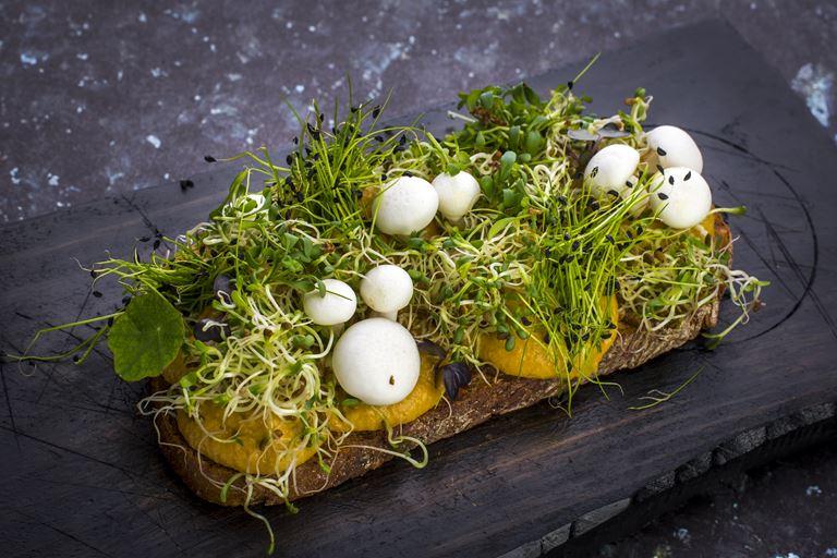 Тост с муссом из белых грибов (vegan)
