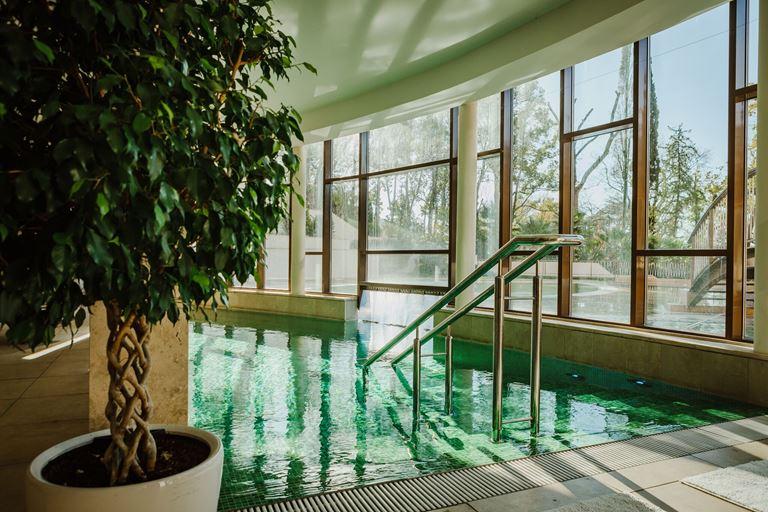 Swissôtel Resort Сочи Камелия - закрытый бассейн