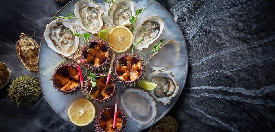 Сеты и плато морепродуктов в Humans Seafood Bar