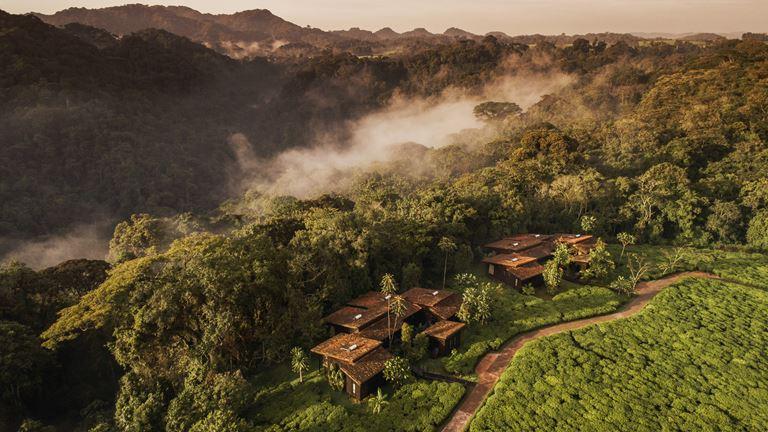 5 причин посетить Руанду (и One&Only Nyungwe House) - фото 1