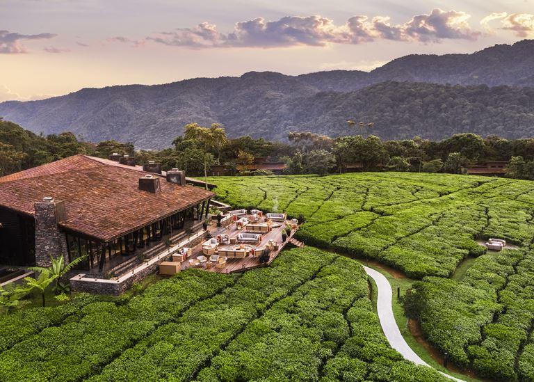 5 причин посетить Руанду (и One&Only Nyungwe House) - фото 5