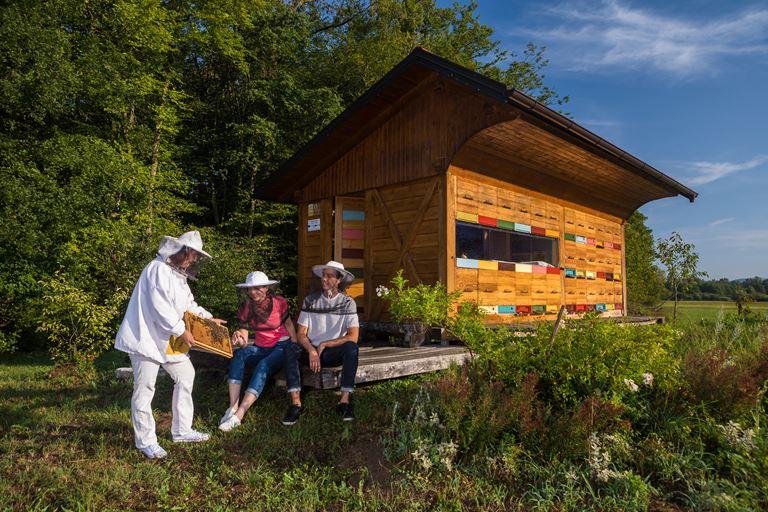Туризм и пчеловодство: Словения как европейская столица апитуризма
